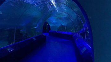 180 neu 90 o Baneli Acrylig Gradd ar gyfer Twnnel yr Aquarium