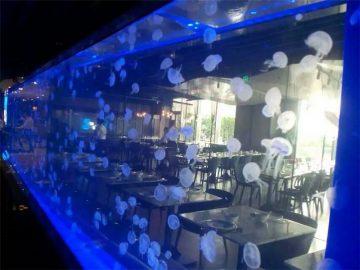 Taflen Arylig danc Jellyfish